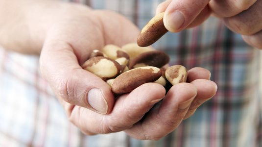 Handful of brazil nuts